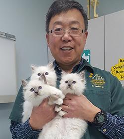 Dr. Yanhui Qi Resized